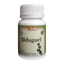 Kapsul Herbal Sidaguri