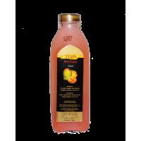 Toza Concrete Juice Mango 1L