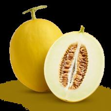 Buah Golden Melon Per Buah (2-2,5 kg)