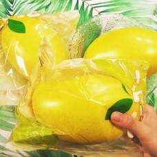 Mango Squishy