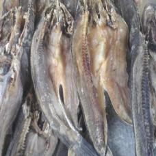 Ikan Asin Gabus Per 100 gram