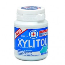 Lotte Xylitol Candy Chewing Gum Mint 66gr