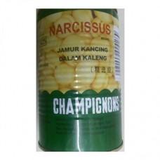 Narcissus Mushroom 425 gr