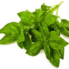Basil Per bunch
