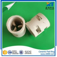 Xintao Ceramic Pall Ring