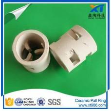 Xintao Ceramic Pall Ring